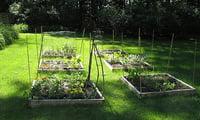 Цветы и огород в саду...