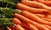 Crops and carrots storage.jpg