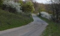 дорога вдоль участка