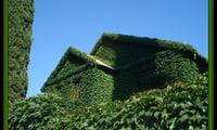 зеленый дом своими руками