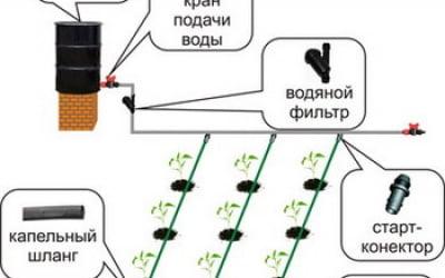 Инжектор для капельного полива своими руками фото