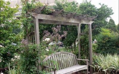 садовая арка над скамейкой