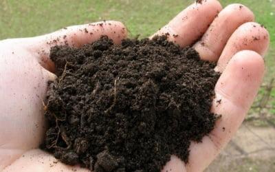 подготавливаем почву
