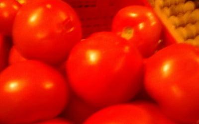 Великаны - помидоры