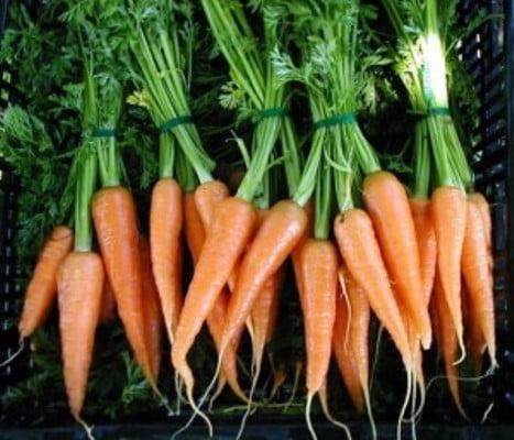 морковкой: